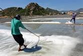 Importations de 102.000 tonnes de sel en 2012