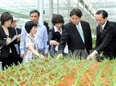 Soutien de Miyazaki à lagriculture high-tech de Nam Dinh