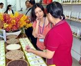 Le riz Hoa Sua ou la naissance d'une «perle» rare