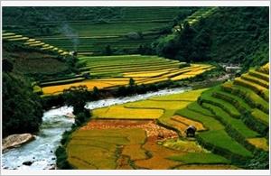 Vietnam, destination de prédilection pour les touristes britanniques