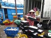 Nécessité de développer fortement et rapidement léconomie maritime