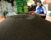 Coopération entre les entreprises dexport de produits alimentaires