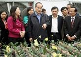 Le Front de la Patrie étudie des modèles déconomie agricole en banlieue de Hanoi