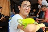 Des reptiles comme animaux de compagnie