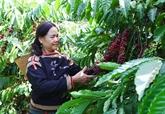 La Banque mondiale soutient lagriculture et léducation vietnamiennes