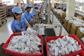 Des produits vietnamiens garantis dorigine écologique