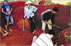 Un tombeau de plus de 1.500 ans à Quang Ninh