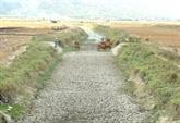 Le delta du Mékong appelé à faire de ses défis des opportunités