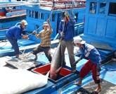 Nouveau label obligatoire pour exporter le thon vietnamien aux États-Unis