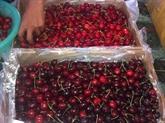 Les importations de fruits et légumes australiens en hausse