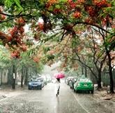 Histoire de la pluie et les proverbes concernés