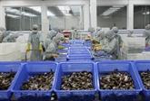 LAccord de libre-échange Vietnam-UE génère de nouvelles opportunités