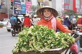 Vendeur de rue, la beauté culturelle de Hanoï