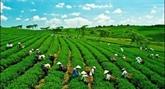 Lagriculture se prépare à faire face aux défis
