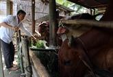 Le Vietnam s'intéresse toujours à la réduction durable de la pauvreté