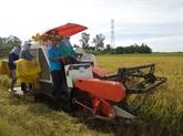 Fierté du secteur du riz vietnamien