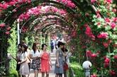 Bientôt la fête des roses de la Bulgarie à Hanoï