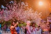 Fête des échanges culturels Hai Phong-Japon