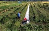 Hâu Giang fait appel à linvestissement dans lagriculture high-tech