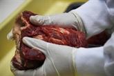 Viande avariée : le Brésil demande la fin des