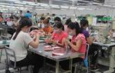 Vietnam - Allemagne : fin des négociations de la coopération au développement
