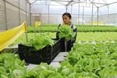 Sorienter vers une agriculture durable et responsable