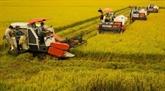 La Semaine de la sécurité alimentaire attendue en août à Cân Tho