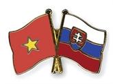 L'Association d'amitié Vietnam-Slovaquie en congrès
