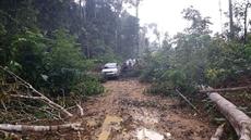 Chronique dun massacre annoncé dans le far-west brésilien