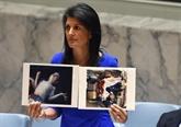 Enquête sur l'attaque chimique en Syrie : vote le 12 avril du Conseil de sécurité