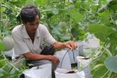 Limportance des sciences et technologies pour la restructuration agricole