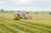 Lagriculture vietnamienne et les changements climatiques