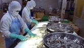 Japon, le plus grand importateur de crevettes du Vietnam