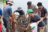 Le Vietnam invite l'Australie à lever l'embargo sur les crevettes