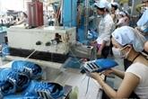 Cuir et des chaussures : priorité à la production de matières premières