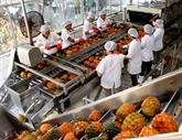 Croissance exceptionnelle pour les exportations de fruits et légumes