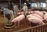 Mesures pour sortir de la crise de la viande de porc