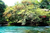 Parc national Phong Nha-Ke Bàng : promotion du 15 au 20 juin