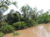La Banque mondiale aide à la rénovation des routes et à la protection forestière