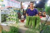 Bénéfices favorables dégagés par les plantations dasperges
