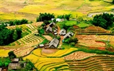 Développer le tourisme communautaire à Sa Pa