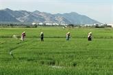 Cân Tho resserre la coopération agricole avec le Japon