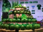 Binh Duong cherche à valoriser ses agrumes
