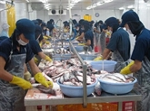 Les exportations de pangas vietnamiens aux États-Unis se redressent