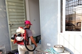Hanoï: 8 milliards de dôngs pour la lutte contre la dengue