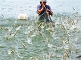 Vietnam - Pérou : coopérer dans lélevage des produits aquatiques