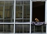 Taux du crédit dimpôt énergétique réduit pour portes et fenêtres