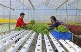 Soutenir la création dentreprises dans lagriculture