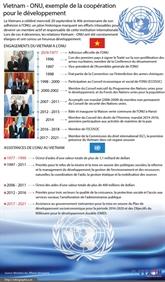 Vietnam - ONU, exemple de la coopération pour le développement