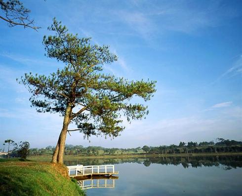 Lac Xuan Huong, Da Lat